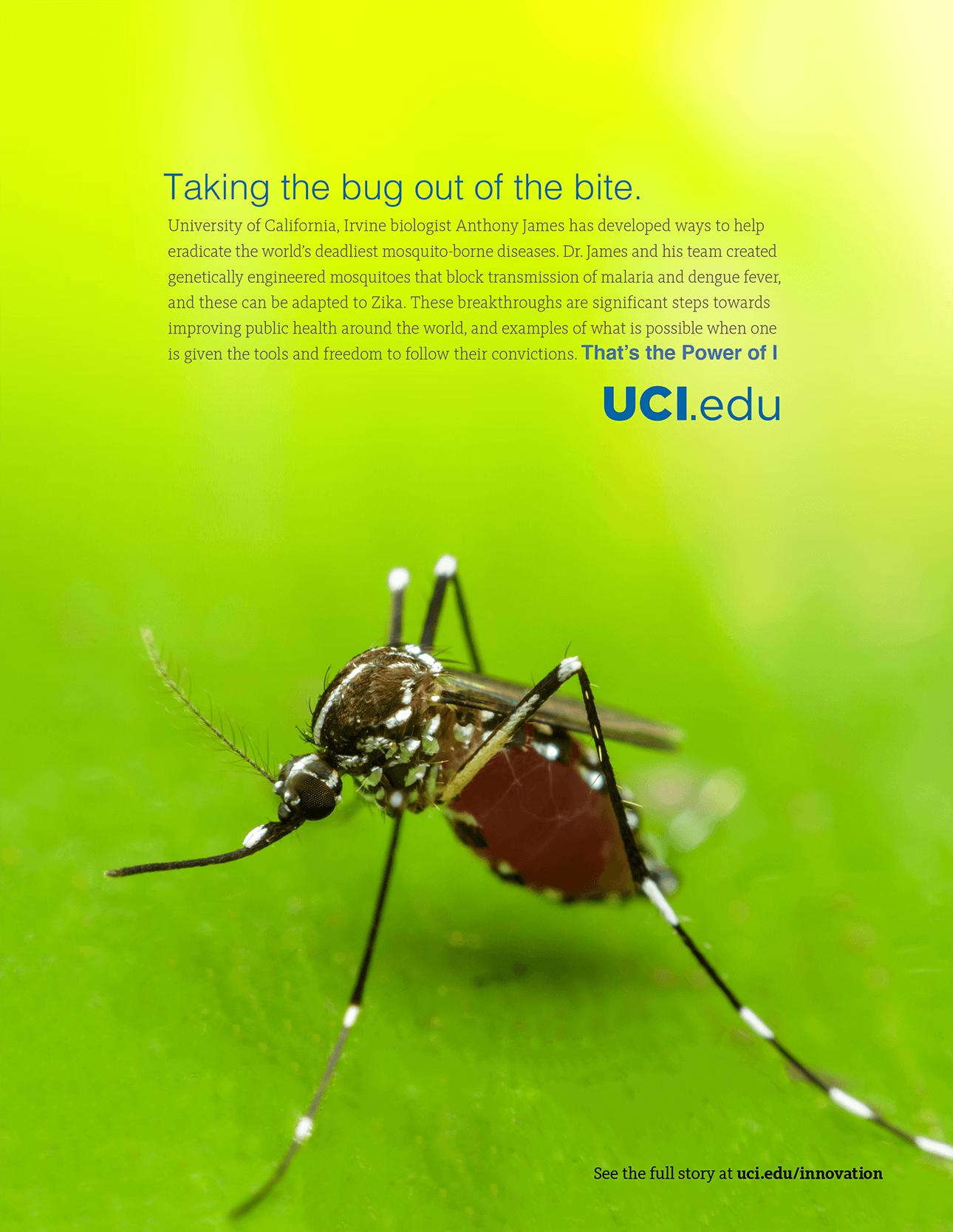 UCI - Print Ad 3